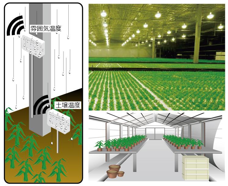 農業プラント・ビニールハウスの雰囲気温度・土壌温度管理